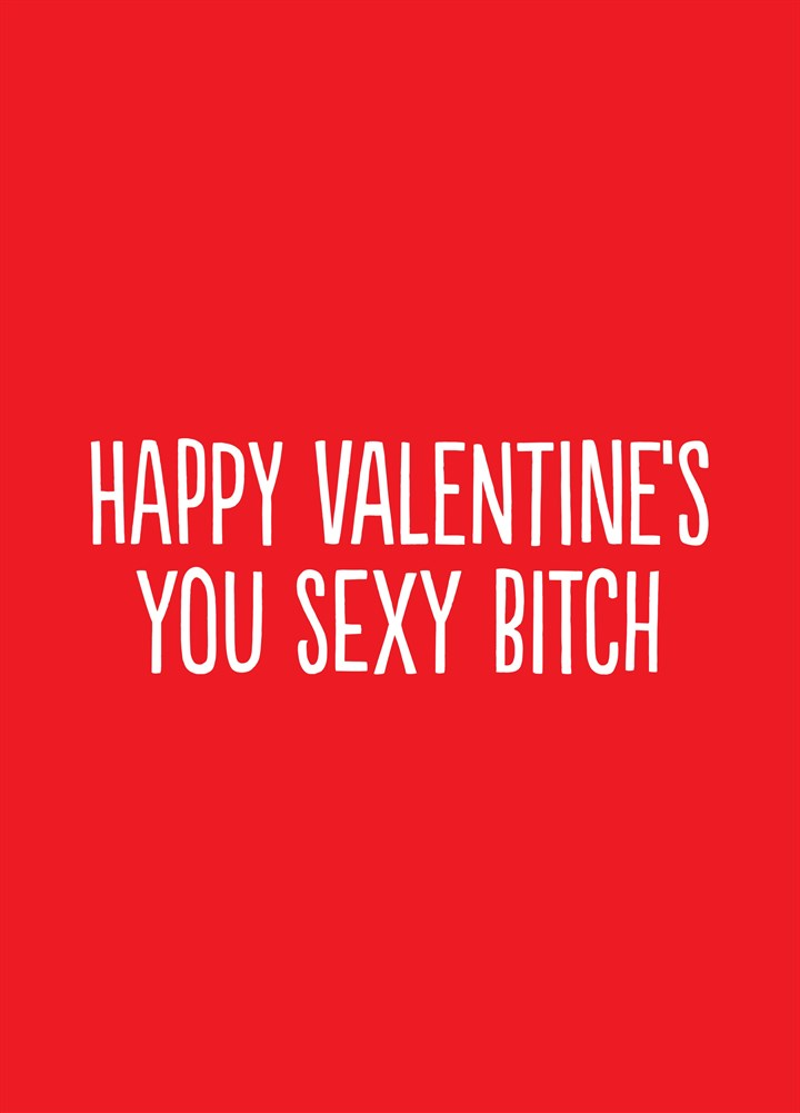 Happy Valentine's You Sexy Bitch