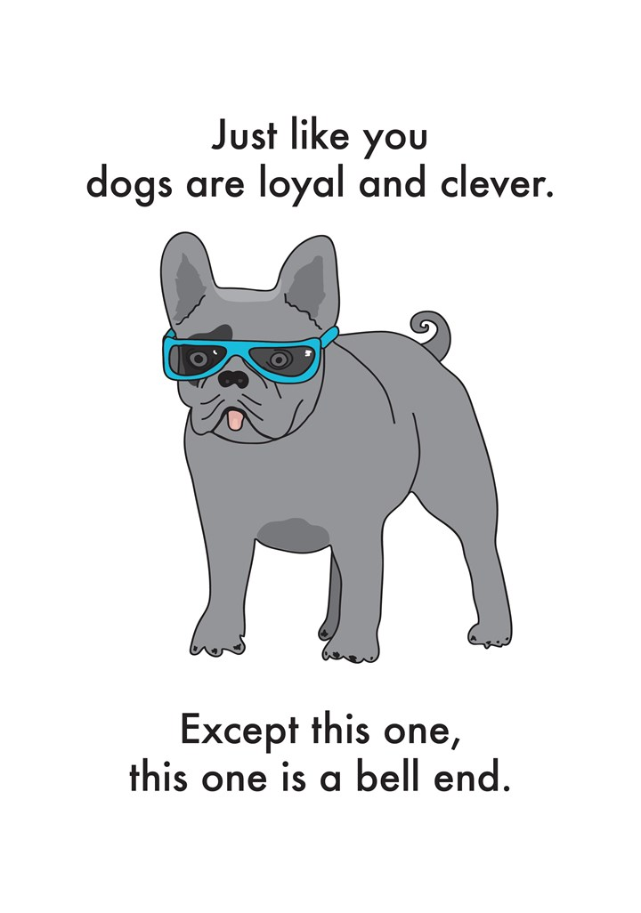 Dogs Are Loyal And Clever