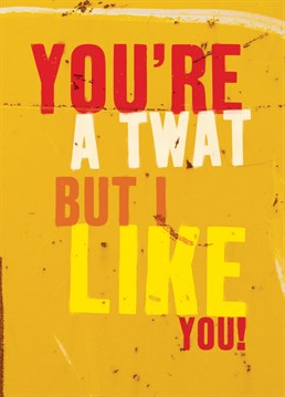 Twat But I Like You. General Greeting Card by Brainbox Candy. Send this card to someone who you like, even though they can be a bit of a doughnut sometimes.