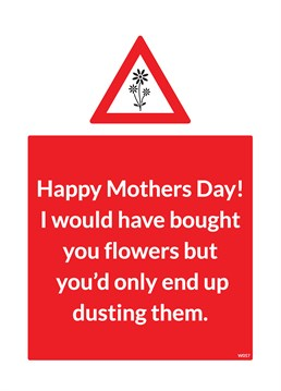Is your mum a compulsive cleaner? Send her the perfect card from Brainbox Candy, because lets face it, she's only going to dust this too!