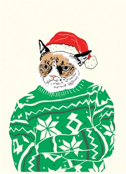 Grumpy Cat is looking very festive in his snowflake jumper and Christmas hat. This Scribbler card is perfect to send to your not-so-jolly loved ones.