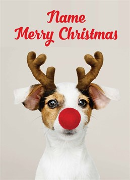Send this adorable personalised rein-dog card to a Jack Russell lover this festive season. Designed by Scribbler.
