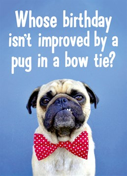 Who doesn't love a pug in a little bow tie? Exactly. So, buy this Dean Morris card and brighten someone's day.