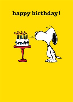 Help them blow out all the (many) candles and make their birthday wish come true, like Snoopy! Peanuts inspired birthday card by Hype.