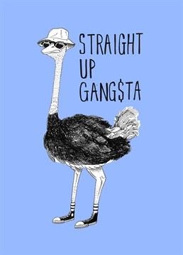 Send this straight up gangsta card by Jolly Awesome to someone who would like a good laugh.