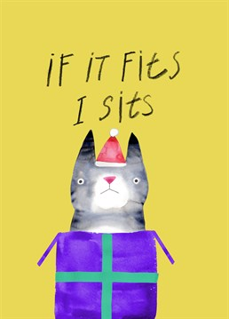 Any lover of cats will enjoy this card by Jolly Awesome.