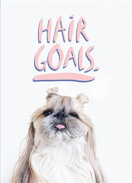 This cute puppy shows off true hair goals where most of us fail. This Jolly Awesome card is perfect to send to a friend who spends most of their time getting ready!