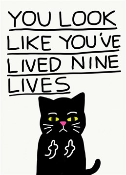 Insult a cat lover and tell them they look old as sh*t on their birthday with this funny design by Jolly Awesome.