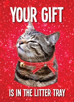 Litter Tray Gift. Christmas Card by KissMeKwik.Cats always try to give their owners nice presents, I'm not sure many would appreciate this one though!