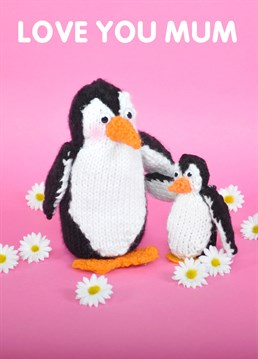 Give your Mum a lot of Penguin love with our Mint knit and purl Mother's Day cards. Get those happy feet out!