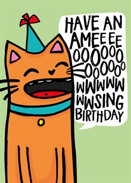 Have An Ameeeooowwsing Birthday