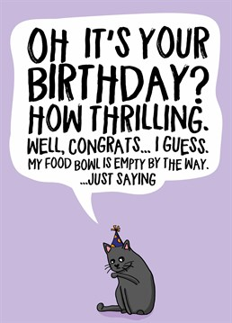 Anyone Who Owns A Cat Knows Exactly How They Feel About Their Owners Birthday