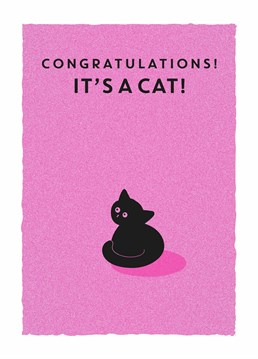 They've just taken the next step in their lives. They had a fur baby! Say congratulations on their new cat with this cute Scribbler card.