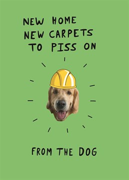Aww they really shouldn't have! Your dog is SUPER excited to christen the new home. Designed by Scribbler.