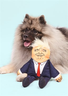 Give your dog a taste of politics with the Donald Trump Dog Toy. Realistic smug face. Unable to use Twitter. Uncanny hair resemblance. Ideal gift for your furry friend. There definitely won't be any fake chews when you throw your Fido this realistic looking Donald Dog Toy! With uncanny resemblance both in the facial detail and its condescending look, your dog will just love gnawing at this president. To be sure that your anti political pooch doesn't break the poor president or endite him, the toy has been reinforced with cotton ribbon in its seams. In addition to this, the squeakers are fond in nylon pockets for extra protection making it harder for your dog to access them. Alas, like the leader of the free world, The Donald Dog Toy isn't completely secure. Meaning this product won't be suited to really sharp teeth. Cards and gifts are sent separately. View our Delivery page for more details on Gift processing and delivery times.