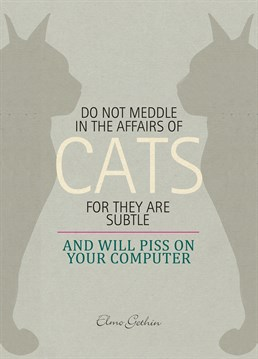 Some sagacious advice for anyone about to get a cat, from U-Studio and their feline friends.